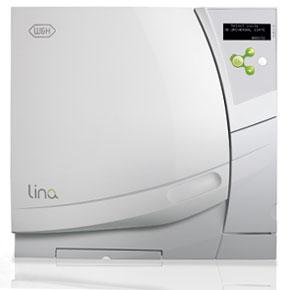 lina-1